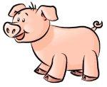 porcco
